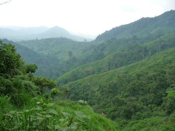 Columbia peace deal to create potential business for cosmetics market through untapped jungle areas