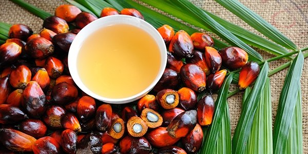 Unilever adjourns palm oil sourcing through Sawit Sumbermas Sarana due to sustainability breach