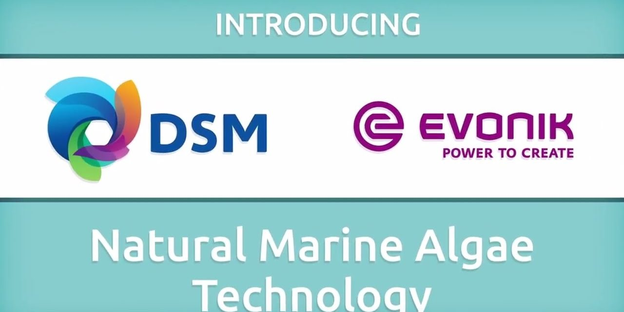 Royal DSM and Evonik join forces to create new company Veramaris for the production of omega-3 fatty acids