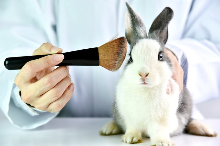 Cruelty Free International and The Body Shop cheer move towards US animal testing ban