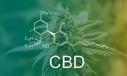 US CBD sales predicted to grow 706 percent to US$5 billion this year