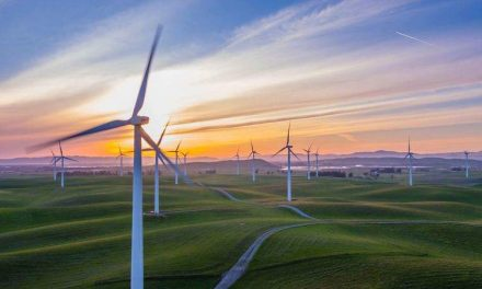 Unilever achieves full renewable energy across five continents