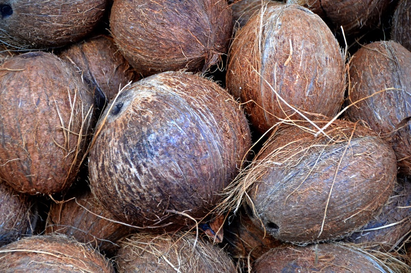 Procter & Gamble and BASF-backed coconut oil initiative helps lives of more than 4100 farmers from Philippines and Indonesia