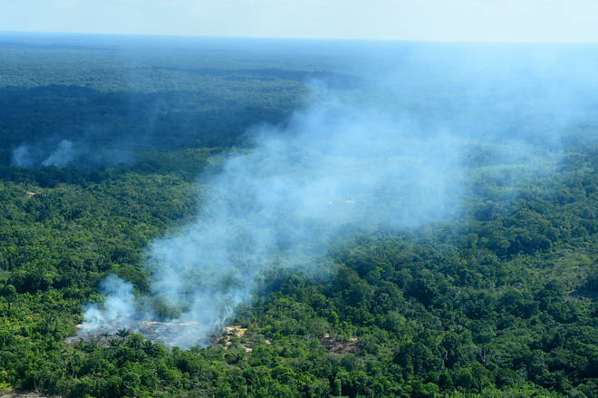 Natura calls for protection of the Amazon rainforest after suppliers hit by fires