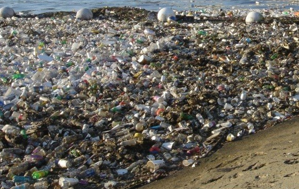 Earth Island sues P&G, Colgate-Palmolive, Clorox et al for plastic pollution