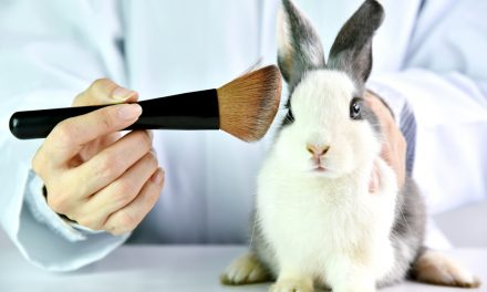 Colombian President signs law to ban use of animals in cosmetics testing by 2024