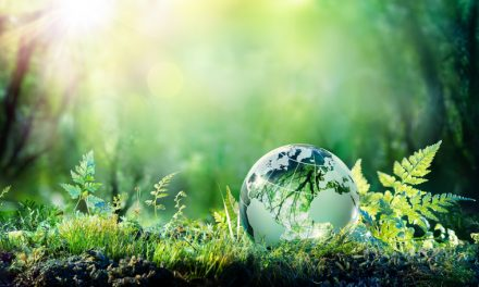 Shiseido launches global sustainability initiative